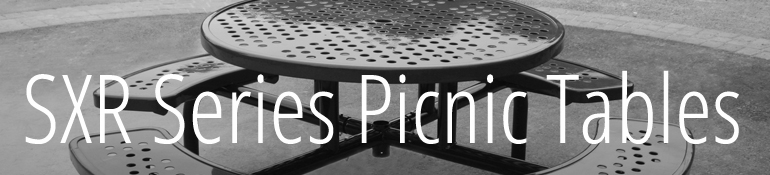 Picnic Table_SXR Series_Title
