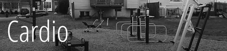 Outdoor Fitness Equipment_Cardio_Title